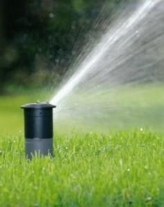 irrigation-image-237x300